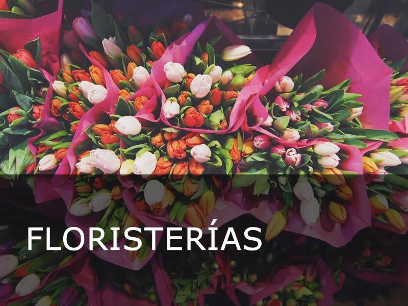 Floristerías en Pontevedra